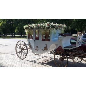 Карета  «Сказка» купить в интернет магазине конной амуниции